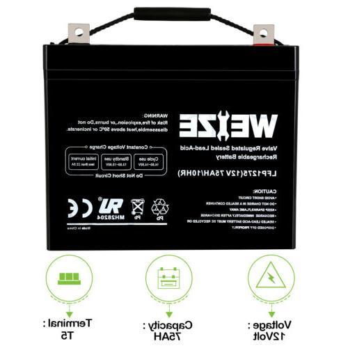 12v 75ah sealed agm battery for mobility